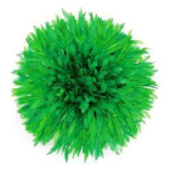 Jujuhat fait de plume de couleur vert clair
